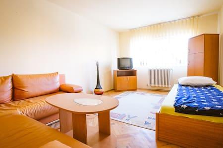 Charming Spacious Apartment - Pis