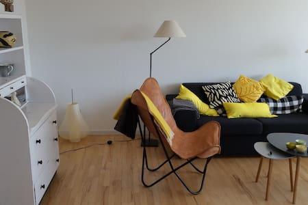 Centralt beliggende rummelig lejlighed - Lägenhet