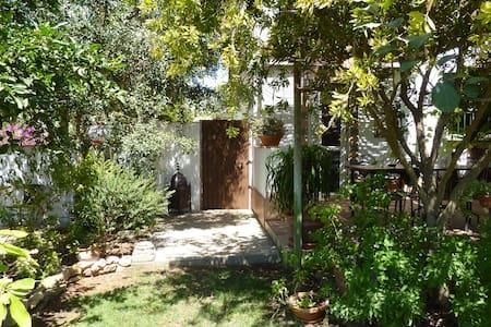 Piso con jardín, patios y terraza - Conil de la Frontera - Apartamento