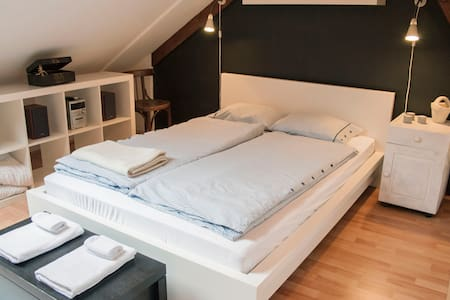 Attic Apt Private Room City Centre / Shared Apt! - Wohnung