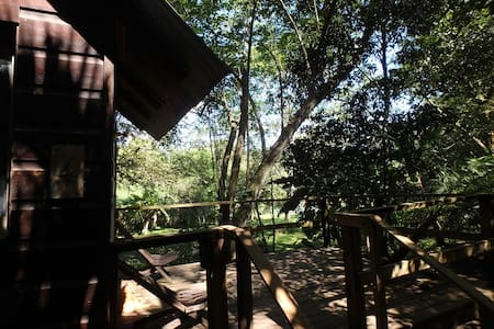 Parrot Nest Treehouse Cabana - San Ignacio - Treehouse