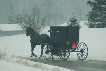 Wintertime in Amish Country/Modular - Middlefield