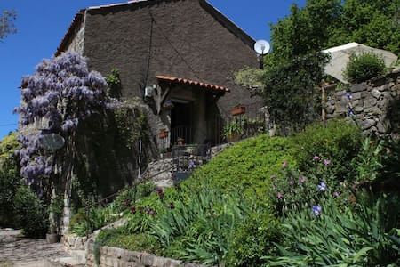 Wisteria - Lunas - Bed & Breakfast
