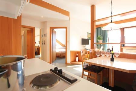 Appartamento in centro paese con uso piscina pubbl - Sand in Taufers
