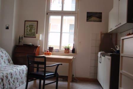 Gemütliche 1-Raum-Whg an der Saale - Jena - Lägenhet