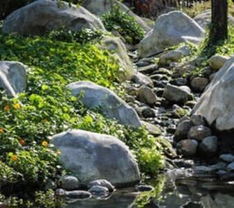 Nature lovers private loft. free wifi - Long Beach - Lejlighedskompleks