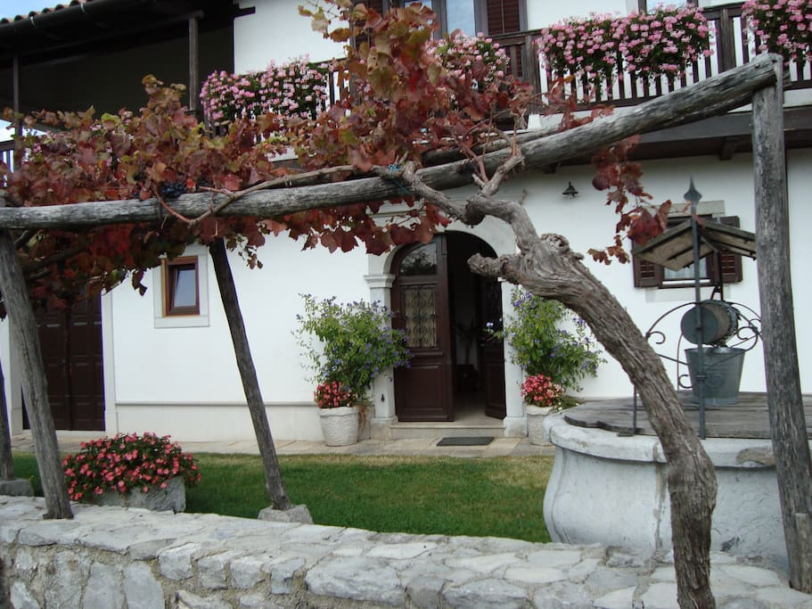 Entrance with vine