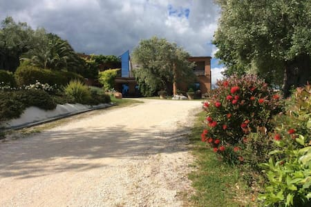 Il podere degli ulivi: nature and luxury - Villa
