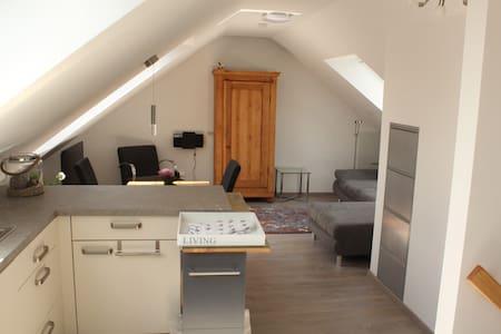 Ruhige Wohnung nahe Messe, fränkisches Seenland - Wendelstein - Huoneisto