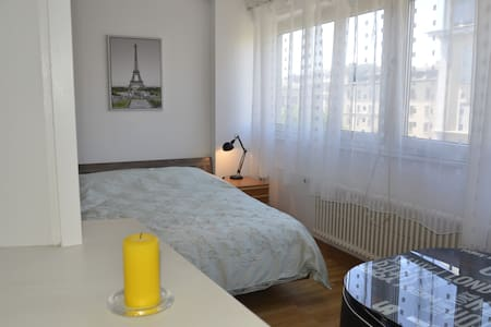 Charming studio in the heart of Geneva - Geneva - Apartment