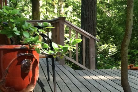 Secluded Cabin in Woods W/Hot TUB (Cabin Fever) - Bainbridge Island - Cabane