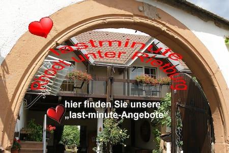 last minute Angebote Rhodt unter Rietburg - Rhodt - Daire