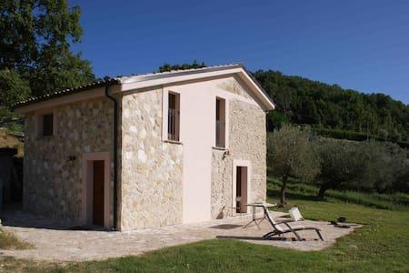 Casolare rustico nell'oliveto - Carpineto della Nora - Rumah