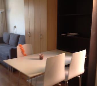 Studio naast huis van mooiste wijk van Alkmaar - Alkmaar - Lakás