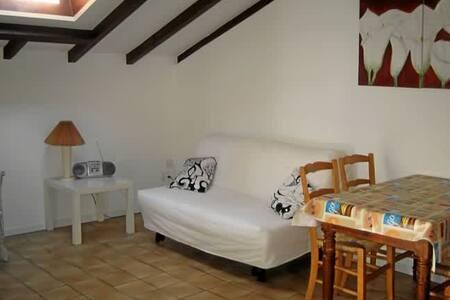 Casa Gialla - Gordola - Apartment