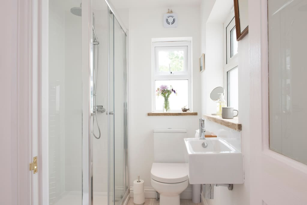 Spacious shower stall and clean modern lines. White washed floor boards throughout the flat.