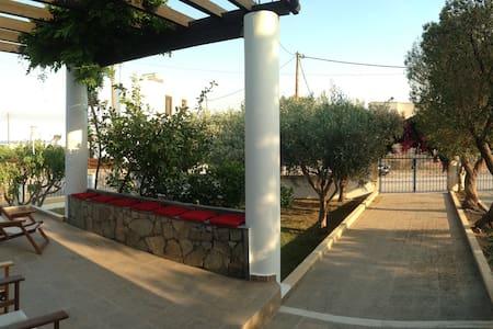 Olive House - Villa