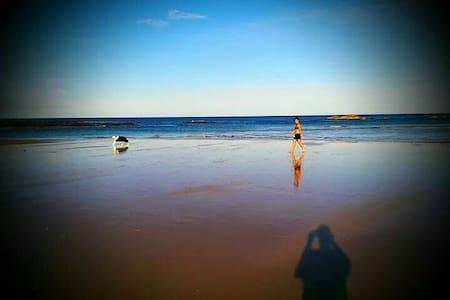Beach and Bush Casa Berrara - Talo