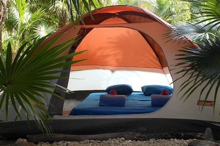 The Top 20 Tents for Rent in Playa del Carmen  Airbnb