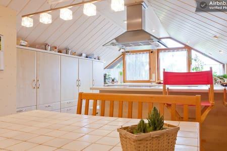 Wohn/Schlafzimmer mit Balkon - Obermichelbach - Apartment