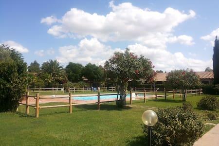 Tuscany: apt with pool - Talo