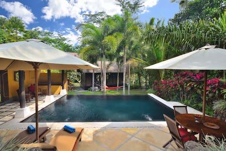 UNIQUE 2 Bedrooms Ubud Bali villa. STUNNING pool. - Ubud - Villa