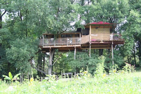 TreeHouse in South West of France.