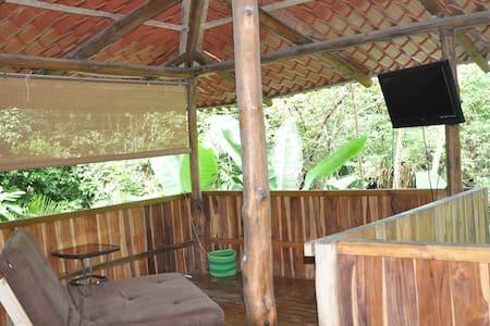 Jungle Vista, Malpais, Costa Rica