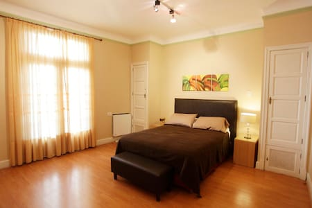 Large 1BR Recoleta  Apartment