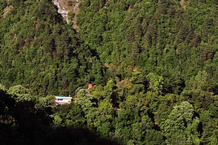 A quite and isolated boutique B&B-1 - Mussoorie - 住宿加早餐