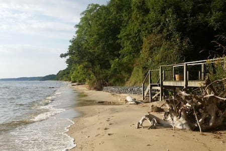 Apartment by Beach, Trails, Fossils 1 hour from DC - Port Republic - Flat