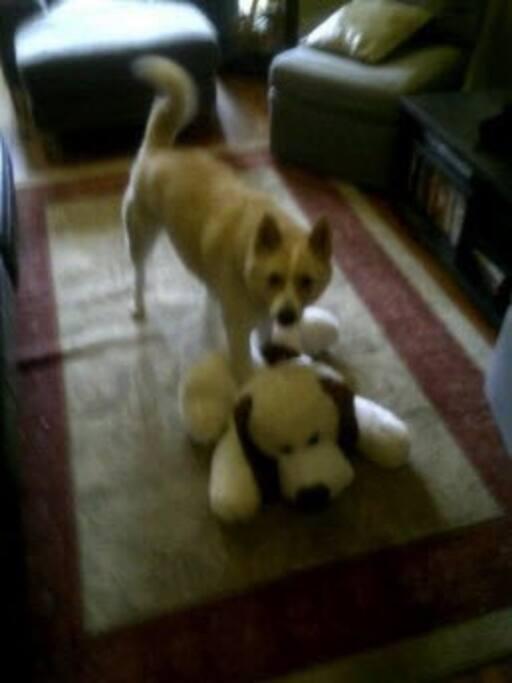 Dog and friend, lol....