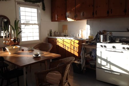 Sunny and spacious one bedroom - Brooklyn - Apartment