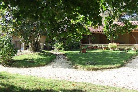 Ch. d'hôtes conviviale près de Marciac (7 km)bleue - House