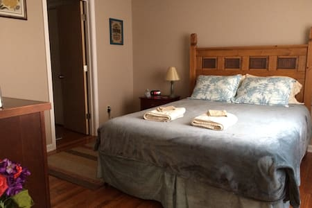 Special: 45% off any 30+ Nights! *Dog Friendly* - Mount Carmel