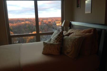 Cozy Studio w/ View, Near Metro - Silver Spring