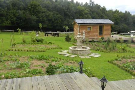 gîte rural piscine jacuzzi chevaux - Les Hogues