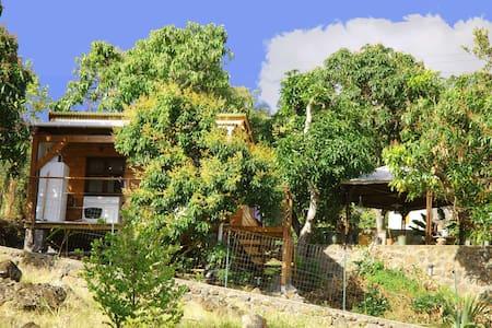 "Bungalow ""The Mango Tree"" - Saint-Leu - Kisház"