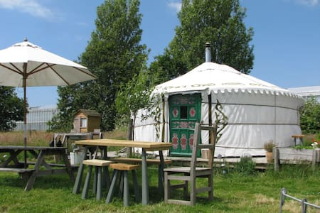 Yurt in a field,something different - Yurt