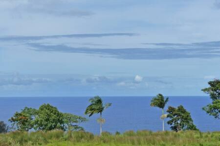 HAMAKUA COAST BEAUTY - Ocean View - Hakalau - Ház