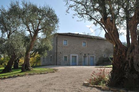 Monnece 11, villa nelle Marche - Cingoli - Blockhütte