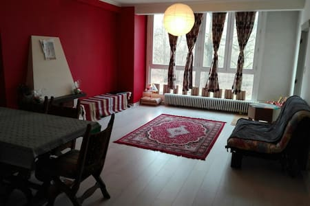 1 bed room near city center - Wohnung