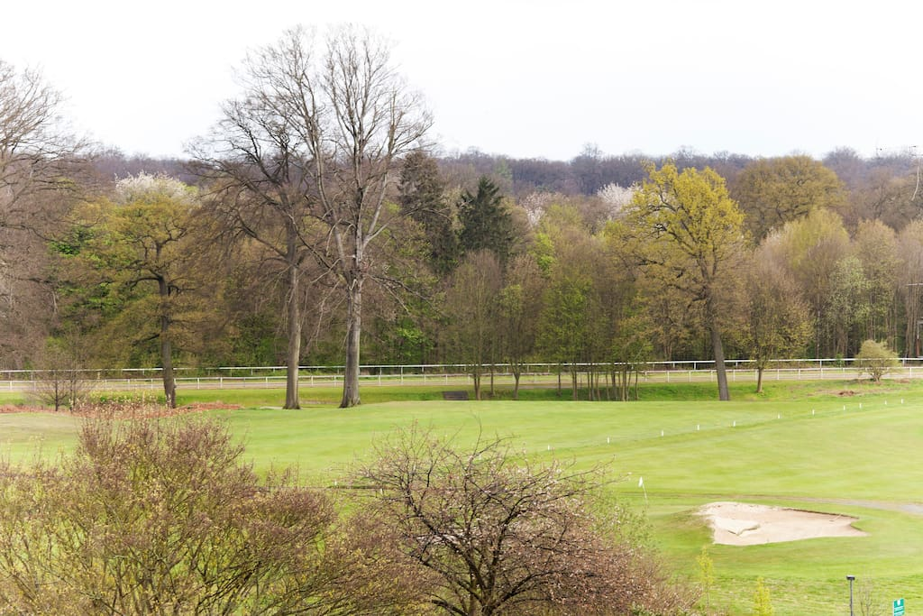The putting green and horse track in the background. The golf course is 9 holes and also has a driving range.