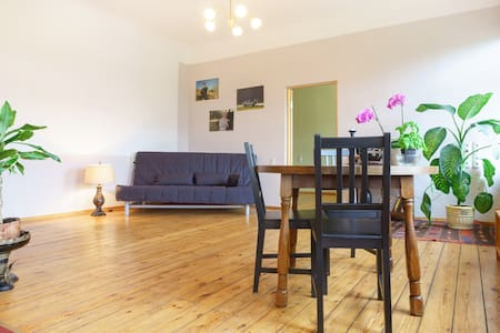 Spacious, central 1-bedroom flat  - Riga