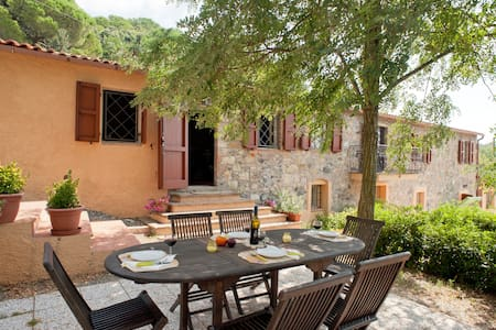 """Apartment """"1"""" in stone guest house"""