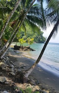 Secluded Eco Lodge Beachfront - Bed & Breakfast
