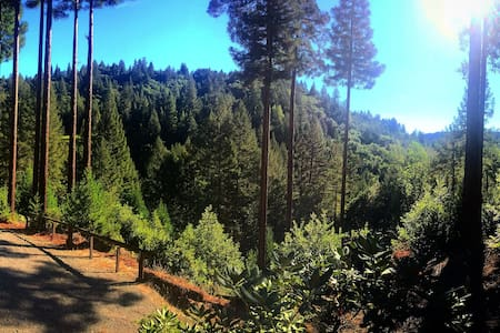 Paradise in the Redwood Forest - Casa