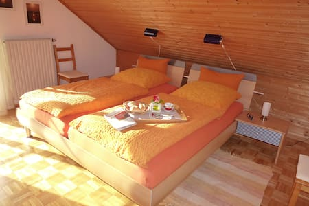 comfy, sunny apartment with balcony - Bad Wurzach - Lägenhet