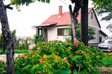 FARKAS Wine cellar & Guest house - Ev