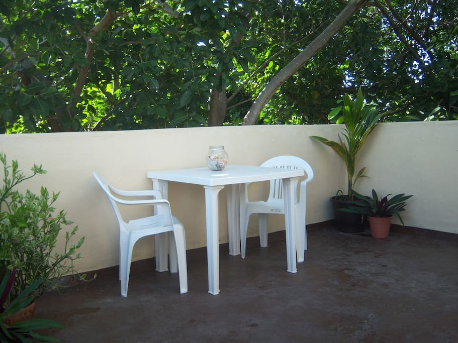 Outside Patio -Great for watching the wild parrots while sipping your morning coffee.